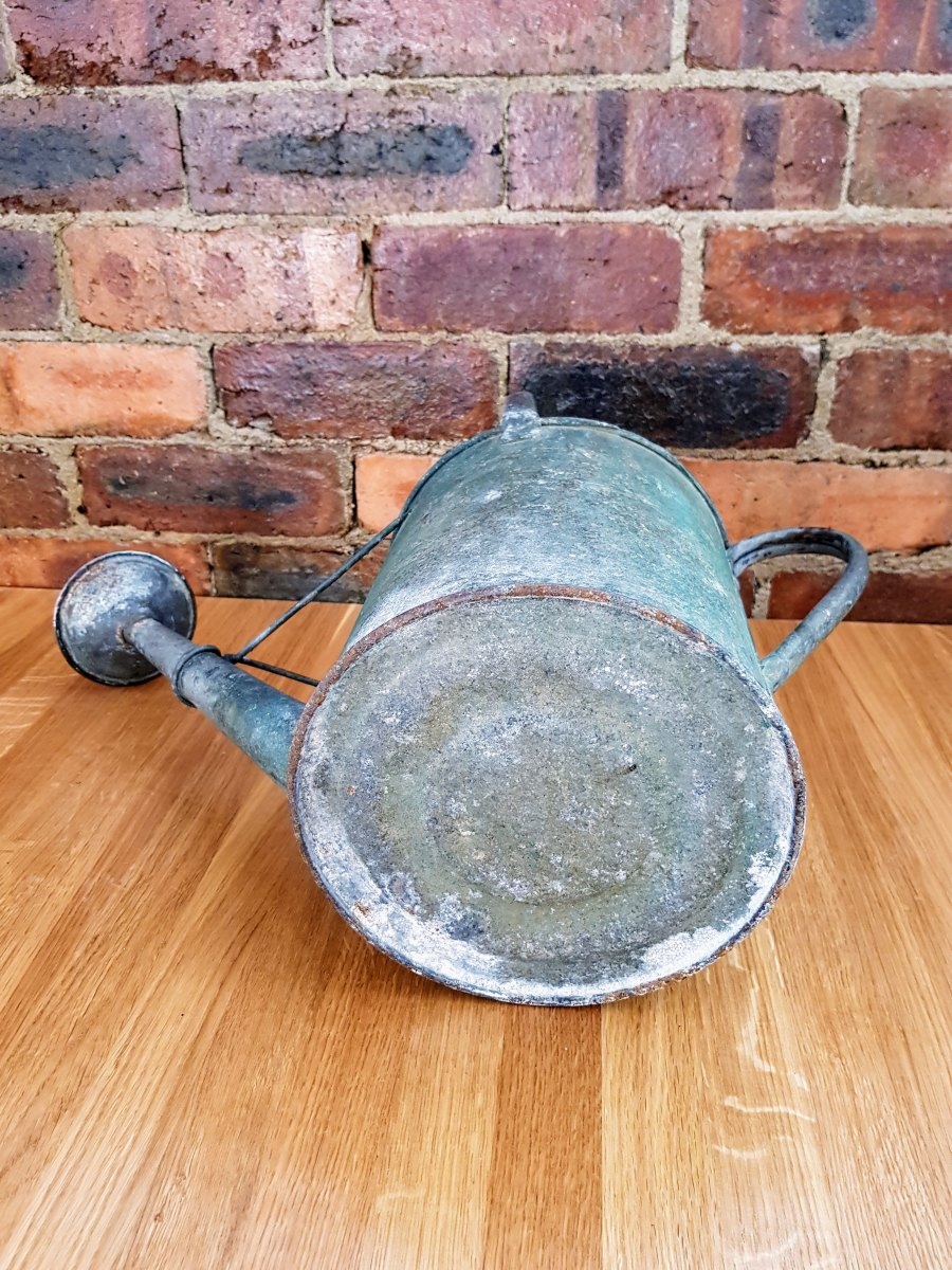 Original Galvanized Beldray Watering Can with Original Copper Rose