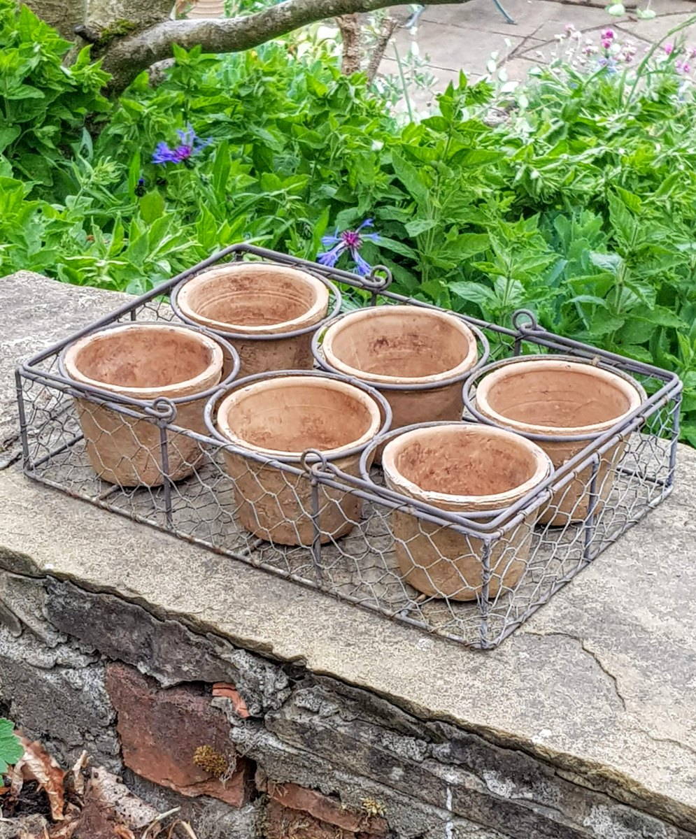 Terracotta Pots In A Wire Basket