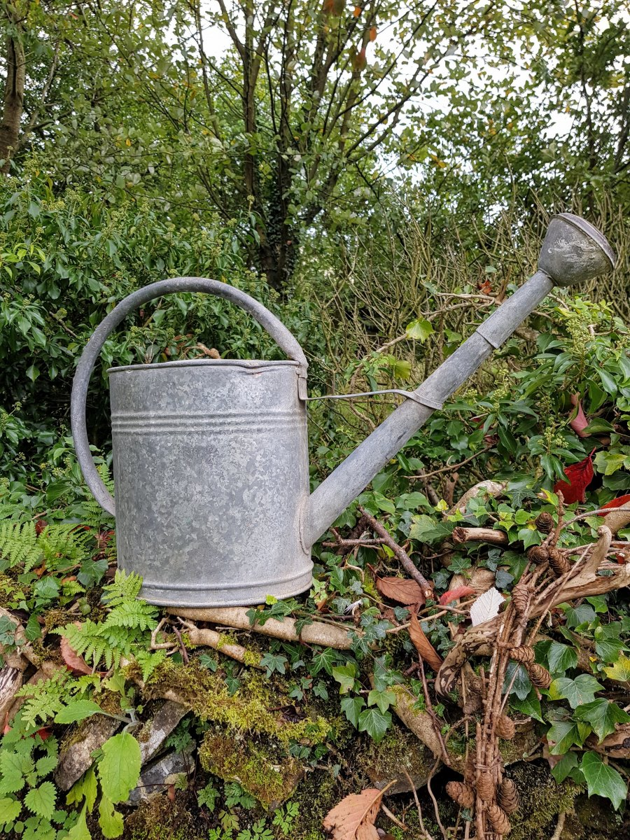 Large Galvanised Watering Can
