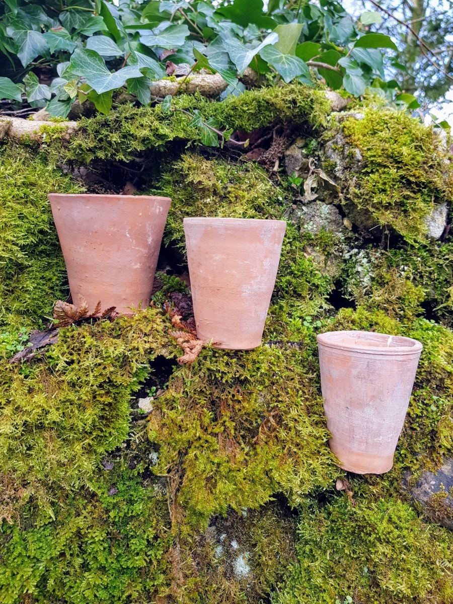 3 Hand Thrown Terracotta Pots