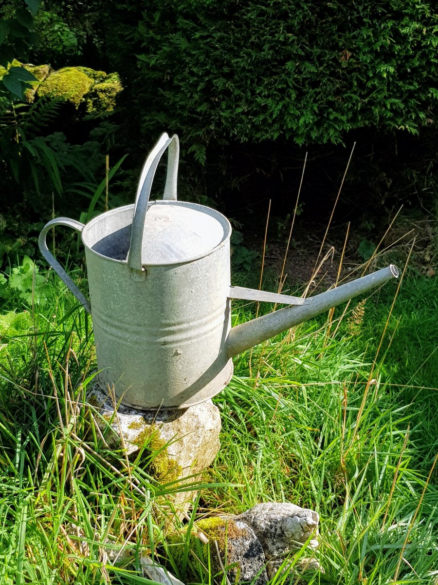 3 Gallon Galvanised Watering Can